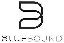 bluesound.jpg