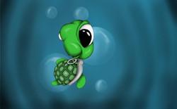 Grenade Turtle