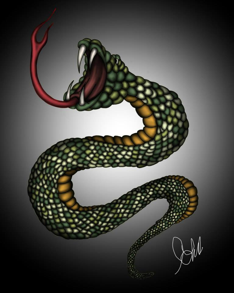 Snake Sketch