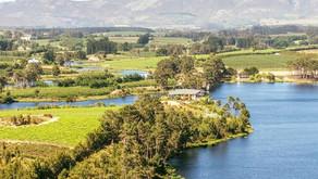 Lothian Vineyards, toonaangevende Pinot Noir uit Zuid-Afrika.