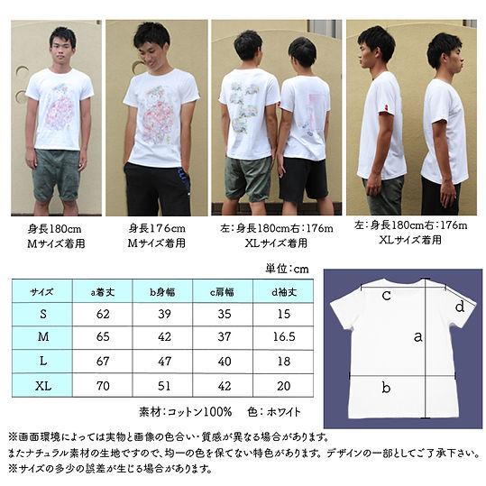 size_tshirt2.jpg
