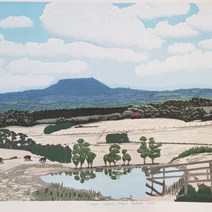 Victorian volcanic plains