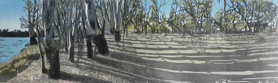 Dirt Tracks.jpg