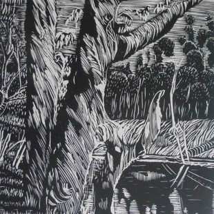 Redgums and river