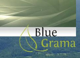 Snip BlueGrama.JPG