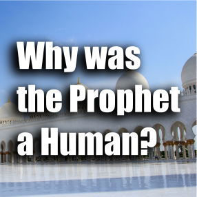 "Article ""Why Was the Prophet a Human?"""