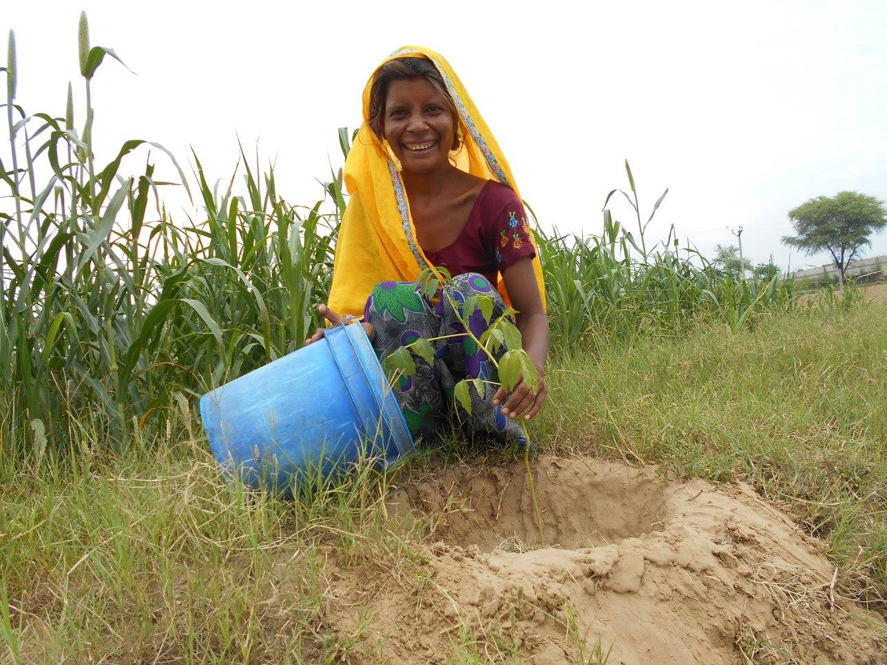 Reshma ready to begin planting!