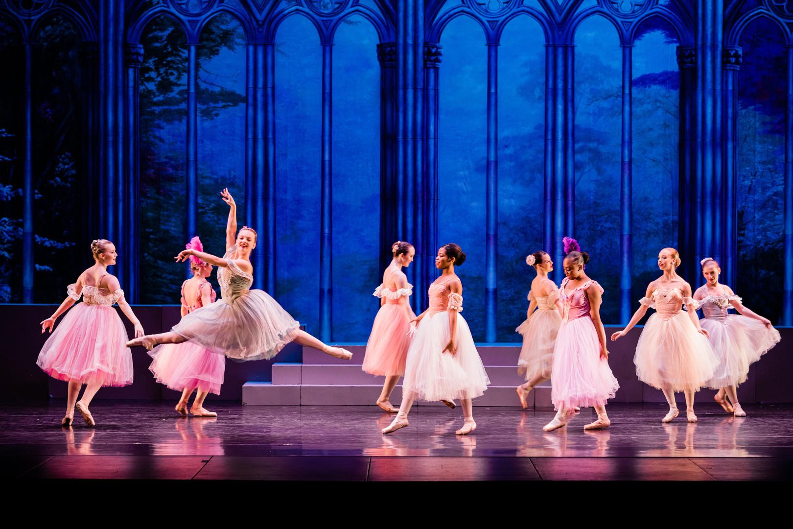 Waltzing Lady from Cinderella