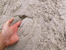 sabbia silicea