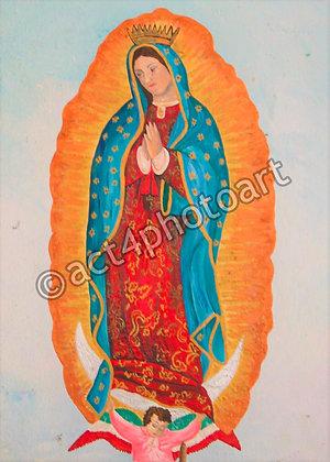 Guadalupe #6