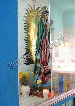Guadalupe #46