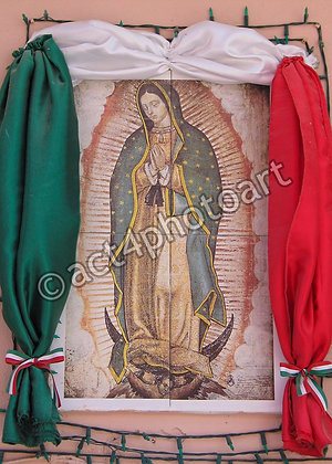 Guadalupe #39