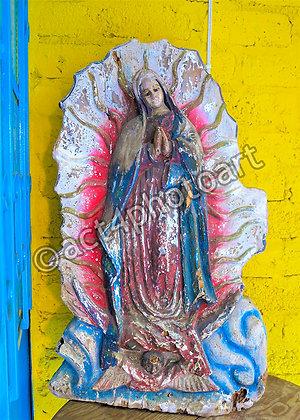 Guadalupe #57