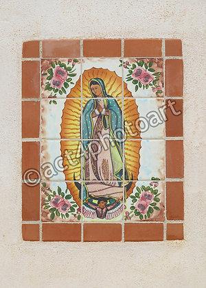 Guadalupe #44