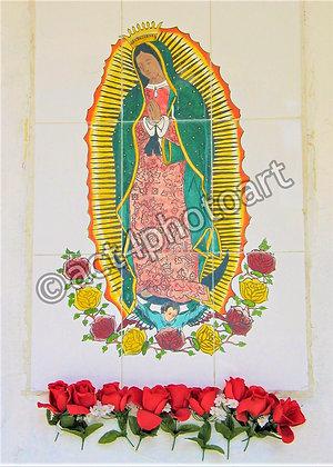 Guadalupe #12