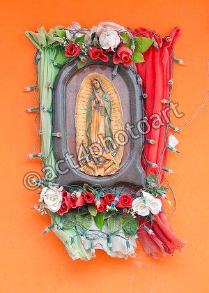 Guadalupe #2