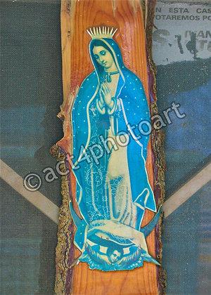 Guadalupe #45