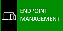ENDPOINT MANAGER.png