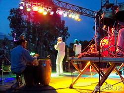 festiv roquefort juin 2011