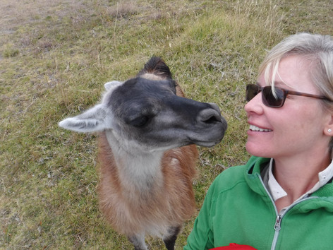 Making llama friends in Chugchilan, Ecuador