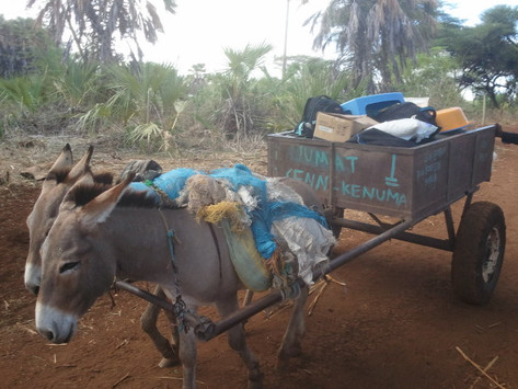 Our vehicle during the rainy season, Kinna (Borana)