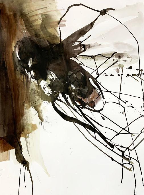 Insekt-1.jpg