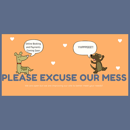 Copy of please excuse.png