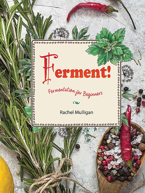 Ferment! Fermentation for Beginners by Rachel Mulligan