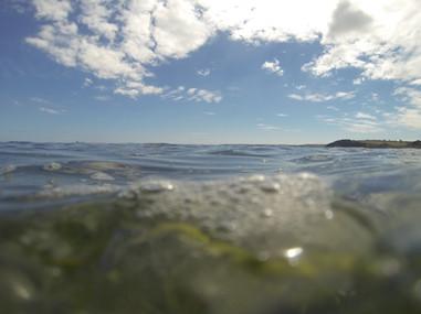 Snorkelling off Tunnel Beach