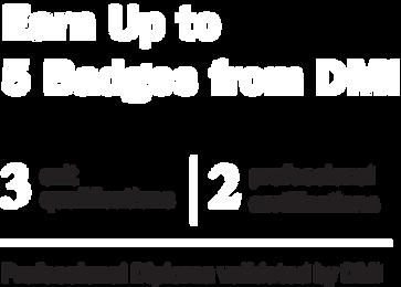 diploma-digital-marketing-singapore-DMI-badges-2