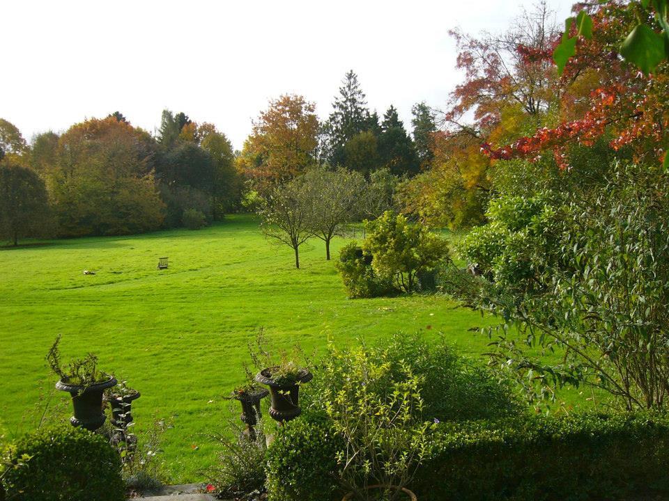 Villa Hellebosch - my view