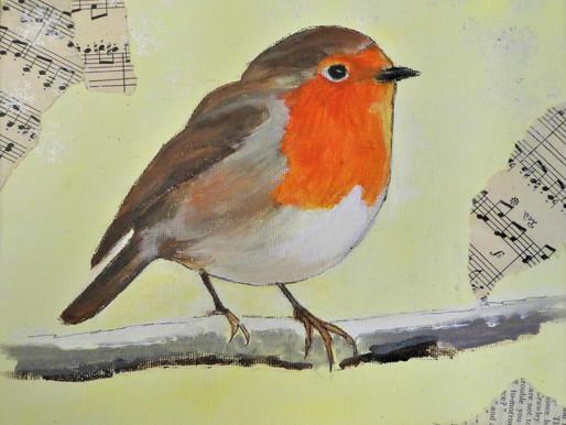 Robin In Detail