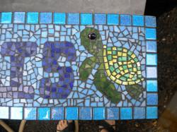 Heather's Turtle