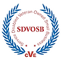 SDVOSB1.png