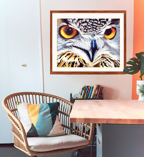 Owl Eyes - Fine Art Print