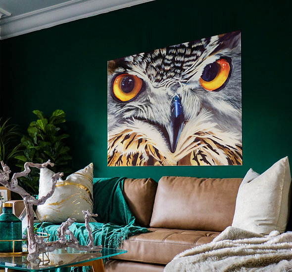 Owl Eyes on Mounted Canvas