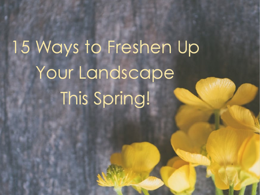15 Ways to Spruce Up Your Yard
