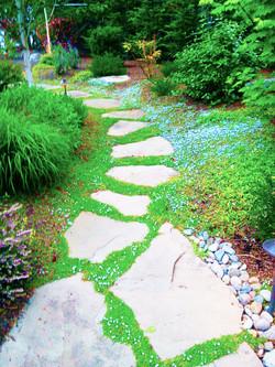 Steppingstones.jpg