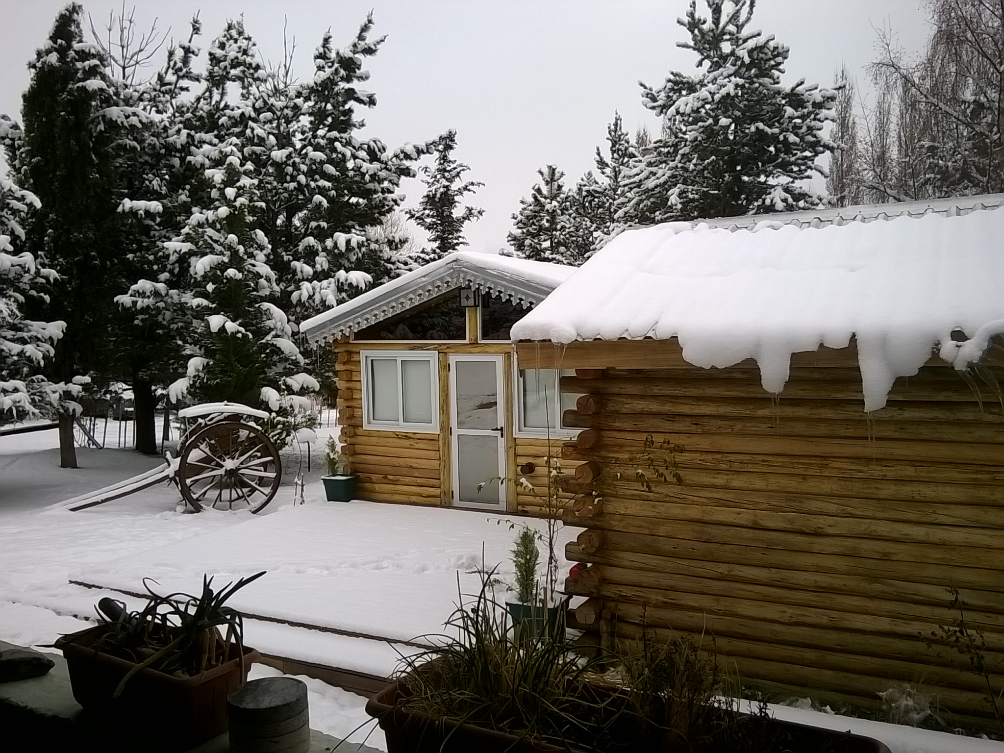 Habitaciones dobles de tronco