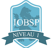 iobsp1.png