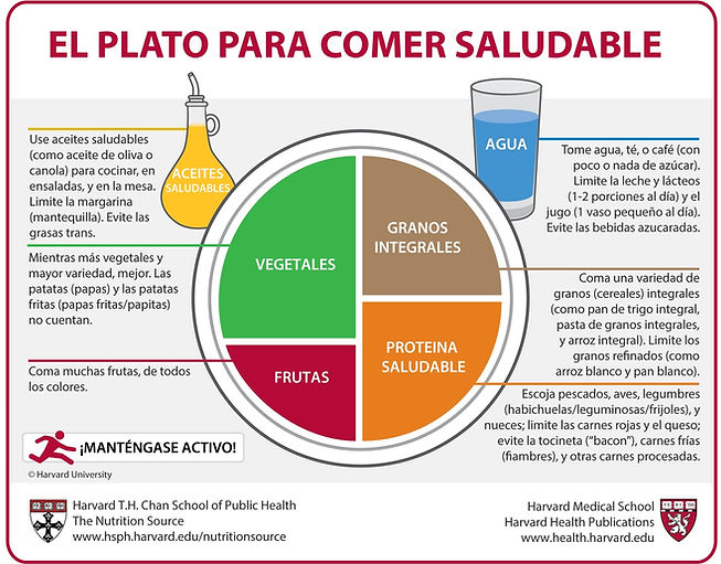 Plato equilibrado de Harvard