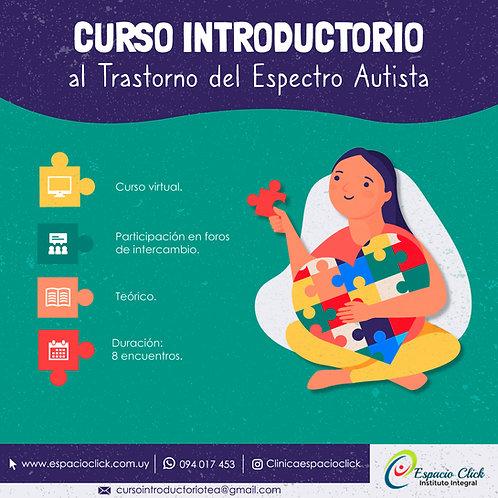 Curso Introductorio al Trastorno del Espectro Autista 27/07/21