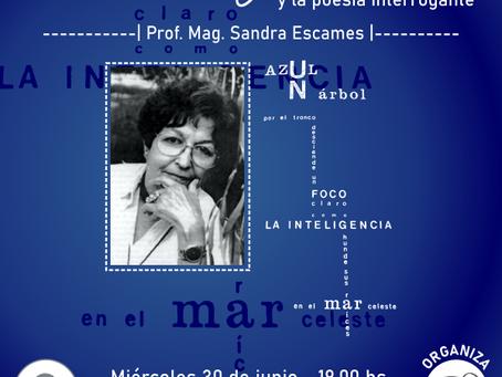 Jornada: Amanda Berenguer y la poesía interrogante