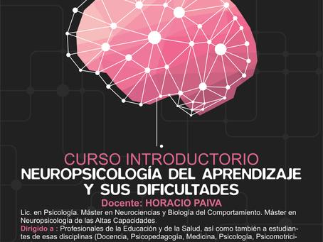 CURSO INTRODUCTORIO A LA NEUROPSICOLOGÍA DEL APRENDIZAJE Y SUS DIFICULTADES