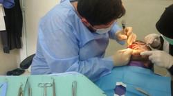 Aleppo Clinic