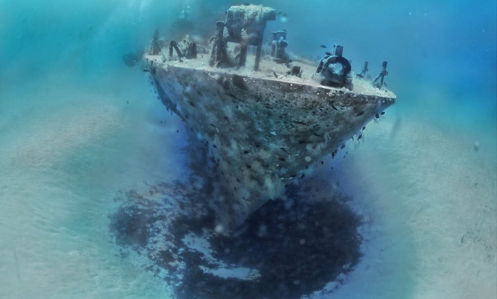 Diving on the island of Comino