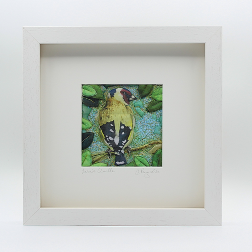 Lasair Choille - Goldfinch