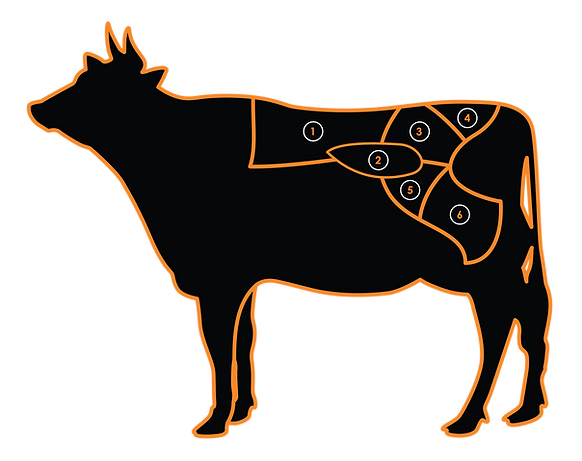 Meat-Cuts-Cow-W-Numbers.png