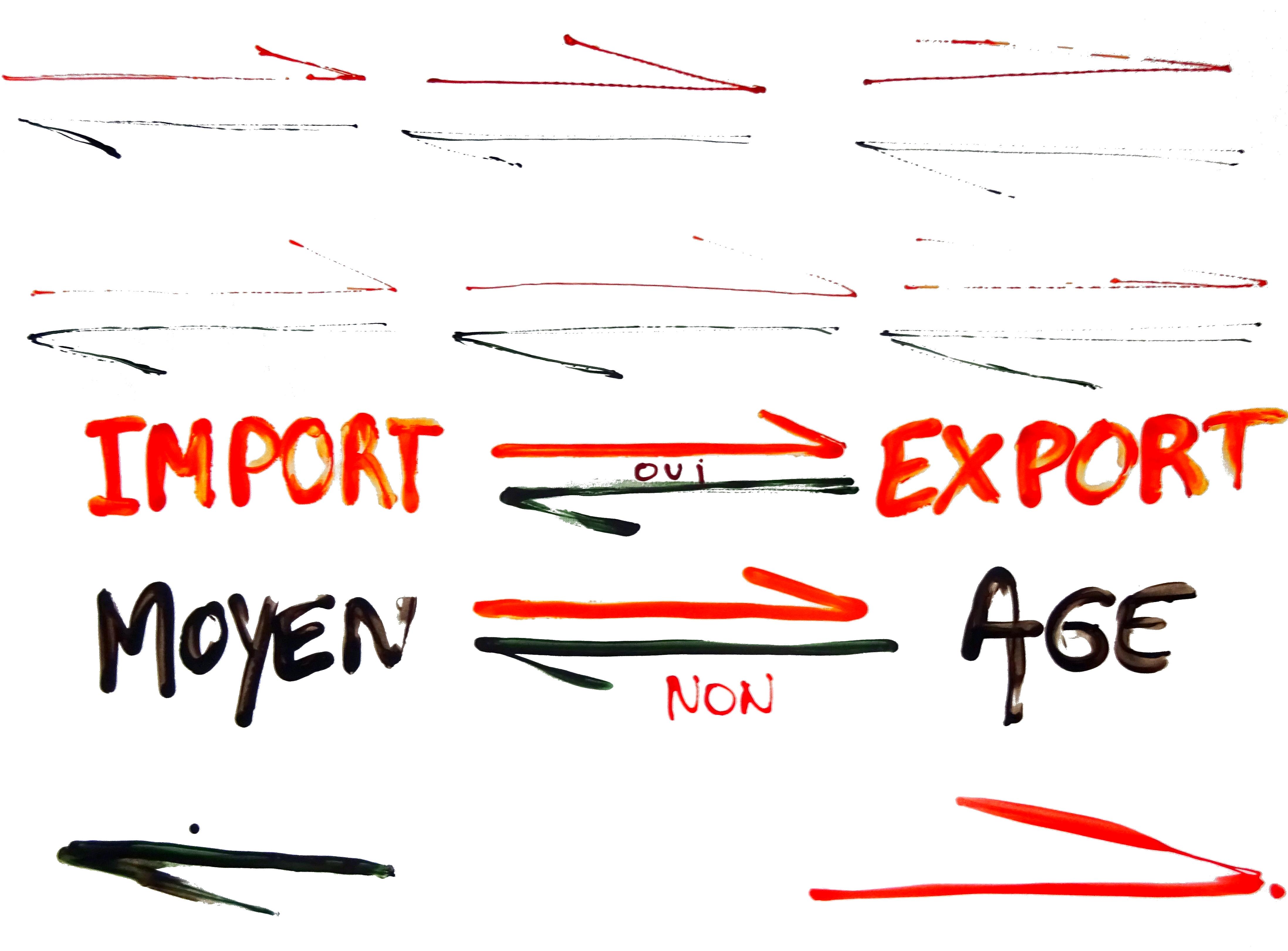 IMPORT EXPORT MOYEN AG
