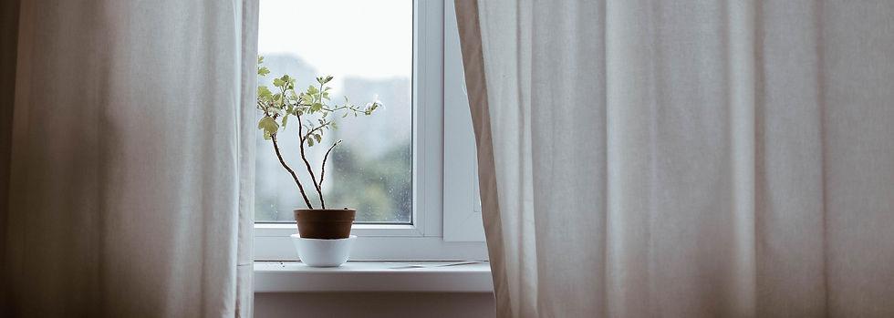Window with Plant_edited.jpg